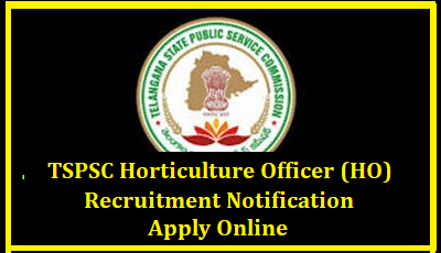 /2018/01/tsp-tspsc-Horticulture-Officer-HO-recruitment-notification-educational-qualifications-exam-pattern-vacancy-details-Hall-tickets-tspsc.gov.in-apply-online-Answer-key-results-download-horticulture-officer-ho.htmlTSPSC Horticulture officer (HO) Recruitment 2018 Apply Online TSPSC Horticulture officer (HO) Recruitment 2018 Coming Soon Apply Online / TSPSC Horticulture officer (HO) Notification 2018 Apply Online / TSPSC Horticulture officer (HO) Recruitment 2018 Eligibility Criteria & Selection Process for More Details at www.tspsc.gov.in | Telangana Public Service Commission Horticulture Officer Jobs Recruitment Notification 2017 | Horticulture Officers (HO) Posts – Telangana Government Recruitment | tspsc-Horticulture-Officer-HO-recruitment-notification-educational-qualifications-exam-pattern-vacancy-details-Hall-tickets-tspsc.gov.in-apply-online-Answer-key-results-download TSPSC Horticulture officer (HO) Recruitment