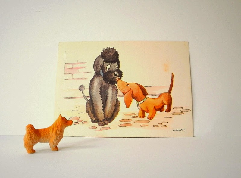 Illustrated post card of  cute poodle and sausage dog
