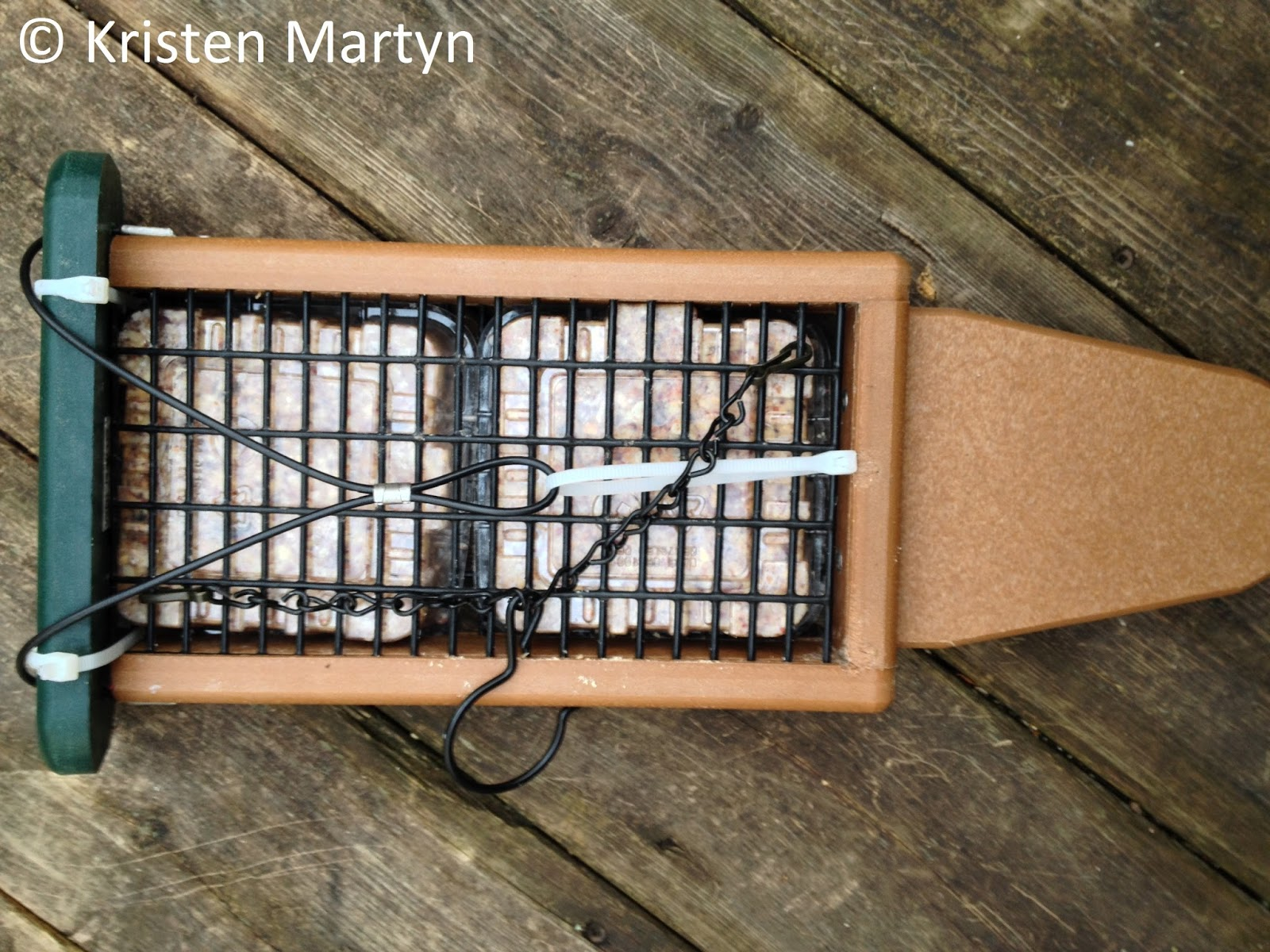 how to keep cowbirds away from feeders