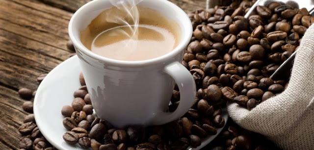 giá cà phê robusta