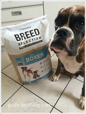 Boxer Amy testet das Trockenfutter - Wildsterne Breed Selection - Boxer