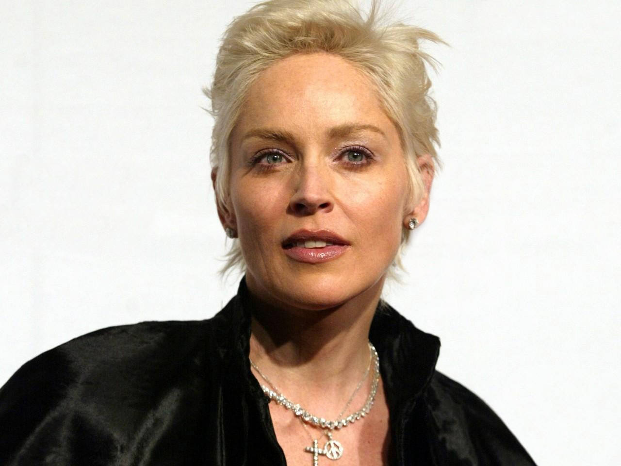 sharon stone in the hollywood blockbuster basic instinc Sharon stone is one of the most iconic women in hollywood knickerless sharon stone, 59, puts everything on display in basic instinct bombshell: sharon is one.