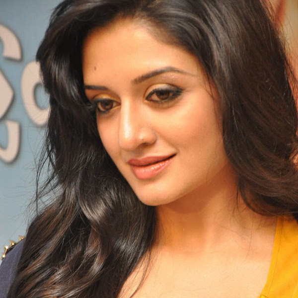 Vimala Raman hot cleavage and navel show photos in saree