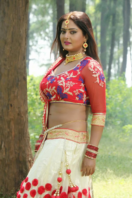 View Bhojpuri Actress Anjana Singh Hot Bikini Bra Topless Photos