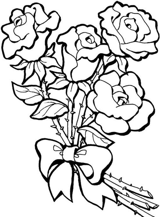 Sketsa Mewarnai Bunga Mawar Untuk Anak Dunia Putra Putri
