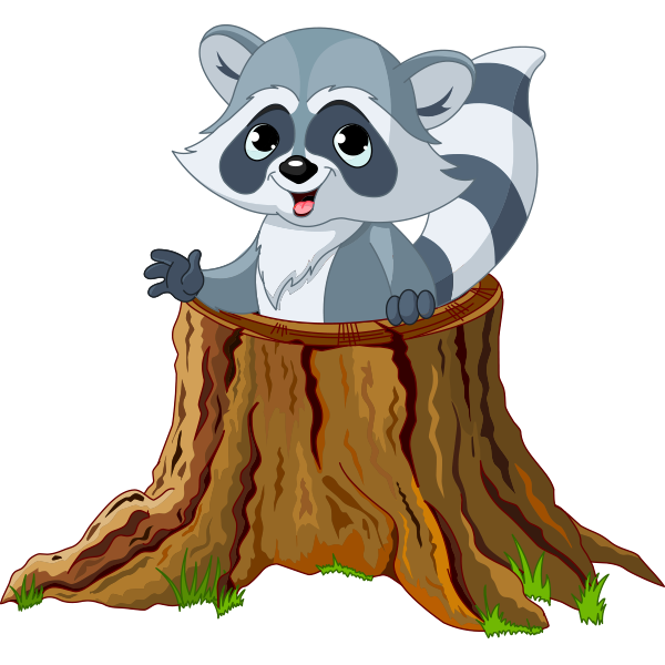 Tree Stump Raccoon