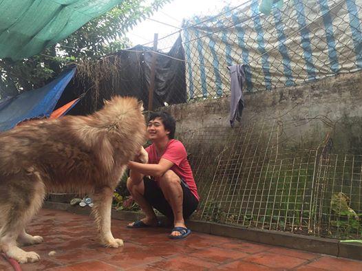 15 điều răn người nuôi chó nên biết