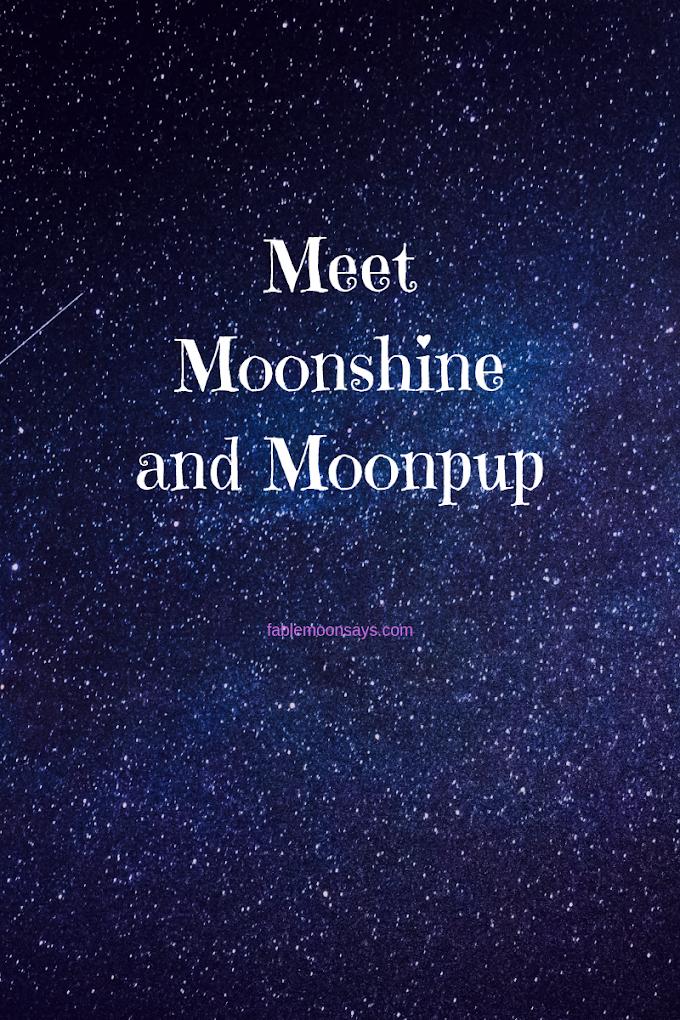 Meet Moonshine