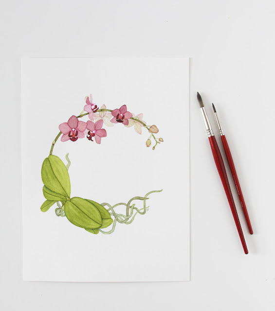watercolor, botanical watercolor, orchids, watercolor wreath, phalaenopsis, Anne Butera, My Giant Strawberry