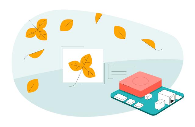 Illustrazione di Coral Dev Board posta accanto alle foglie autunnali
