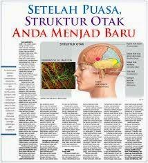 salah satu manfaat puasa perbarui struktur otak jadi baru