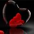 Cinta dan Pernikahan adalah Tema yang Nggak Ada Matinya