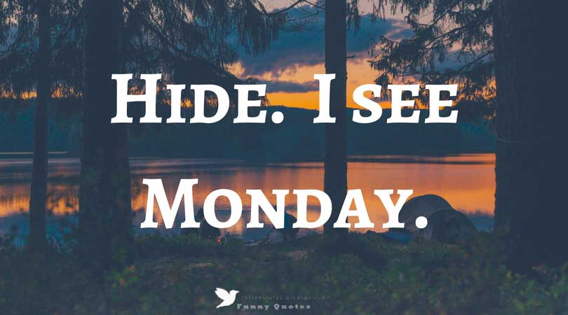 Hide. I see Monday.