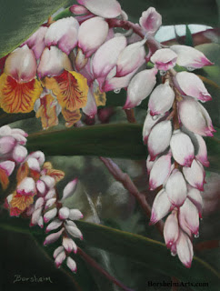 Raindrops on Shell Ginger - original pastel painting art
