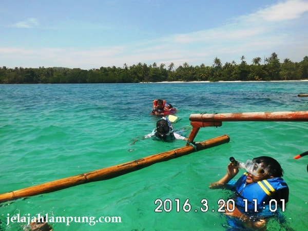 snorkling di Pulau Pahawang Besar