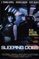 Sleeping Dogs 1998