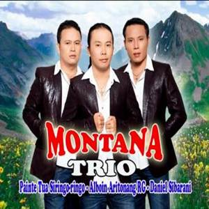 Montana Trio - Holong Agape (Full Album)