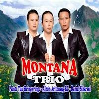 Montana Trio - Holong Agape (Full Album)