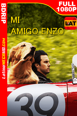 Mi amigo Enzo (2019) Latino FULL HD BDRIP 1080P - 2019
