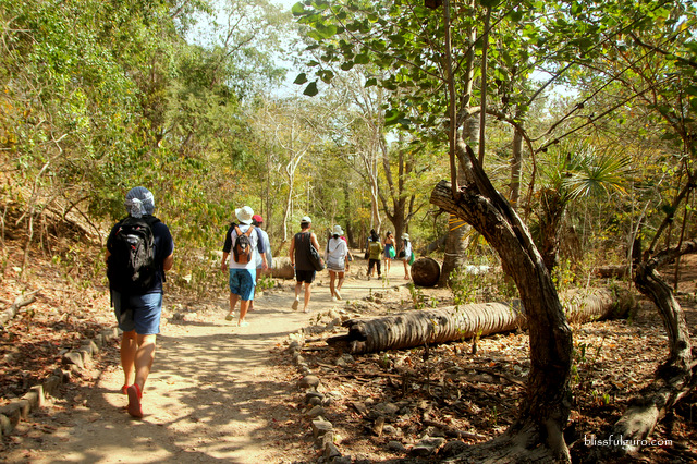Komodo National Park Indonesia Komodo Island