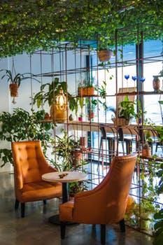 Organic Indoor Gardening Helpful facts about the organic indoor gardening floriculture care indoor gardening workwithnaturefo