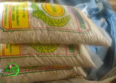 Ini benih yang sudah direndam dan sudah berkecambah siap disemaikan di pawinian/pebenihan.