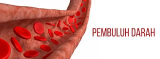 Darah mengalir dalam badan insan melalui pembuluh darah Jenis/Macam-Macam Pembuluh Darah dan Fungsinya