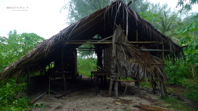 coconut leaves are used to make shelter