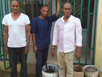 fake native doctor arrested benin