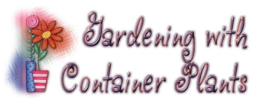 Awesome container gardening idea