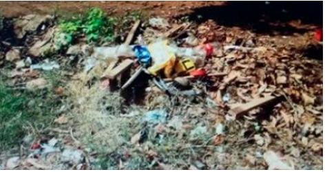 'Crime de epidemia': Mãe e filha são presas por não combaterem focos de Aedes aegypti em Mato Grosso