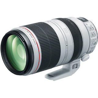 Canon EF 100-400mm  - best of Black Friday deals at Park Cameras