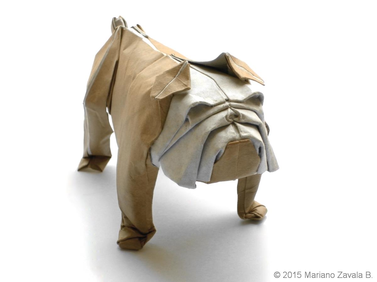 Mariano Mi Mundo El Origami Bulldog