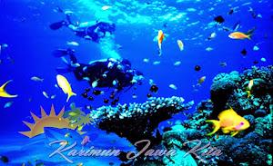 wisata diving di perairan karimun jawa