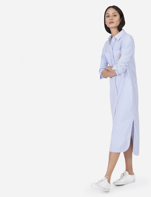 Everlane shirt dress