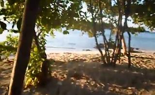 hutan pantai karimunjawa