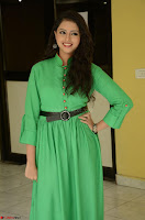 Geethanjali in Green Dress at Mixture Potlam Movie Pressmeet March 2017 059.JPG
