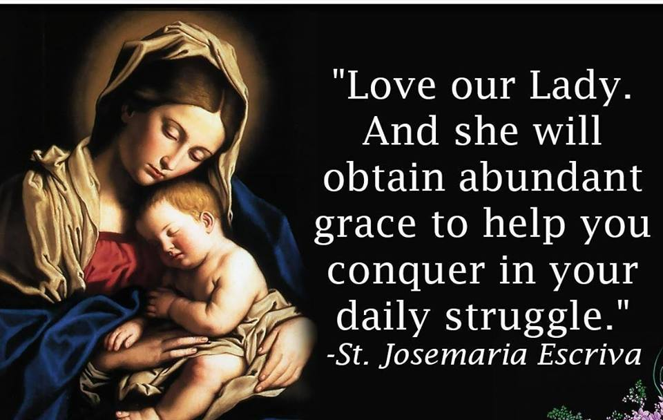 Catholic News World Quote To SHARE By St Josemaria Escriva Love Amazing Catholic Quotes On Love