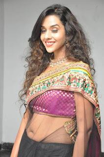 South-actress-hot-saree-photo