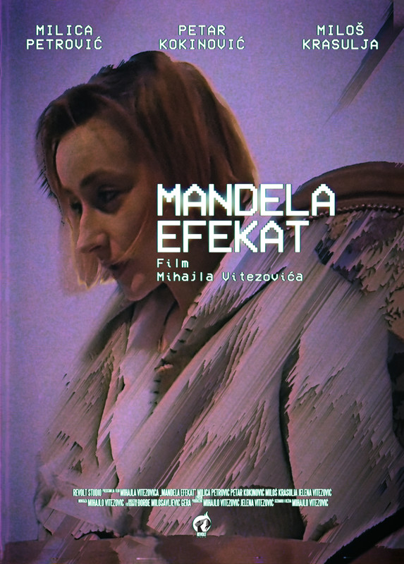 The Mandela Effect (2019)  English 1080p WEB-DL  | 720P | 1.2GB | 700MB   | Download | Watch Online | Direct Links | GDrive