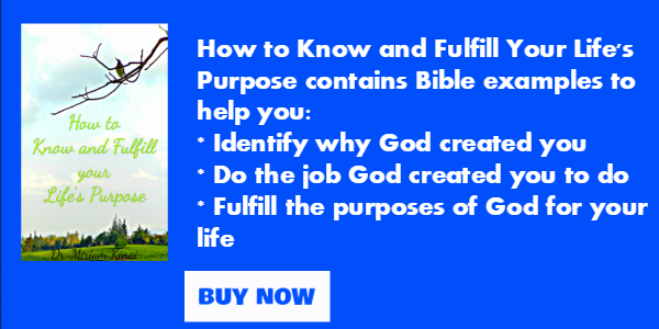 How to know and fulfill your life purpose book