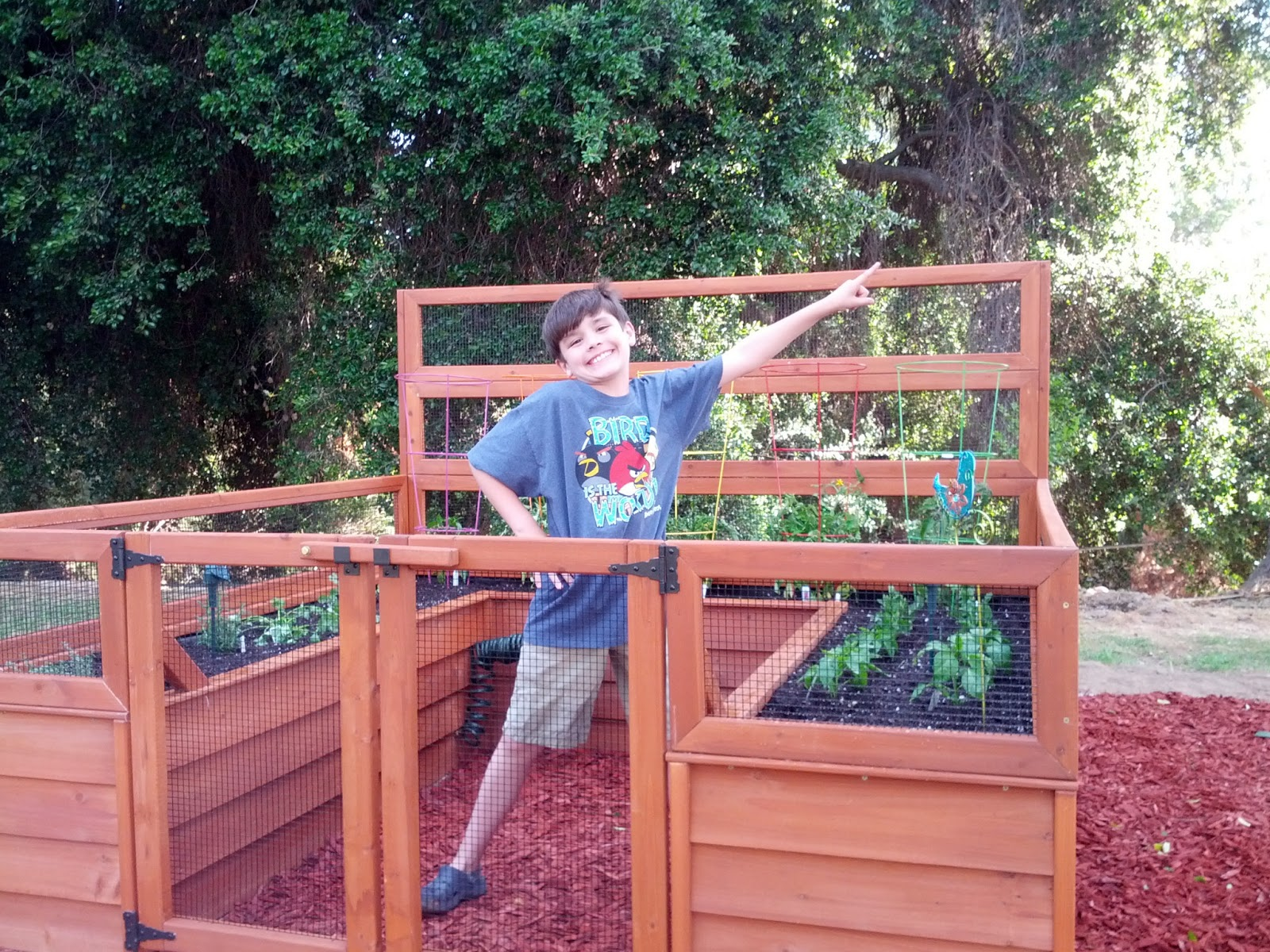 Angee Bee's: Backyard Botanical Complete Gardening System ...