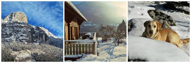 switzerland housesit