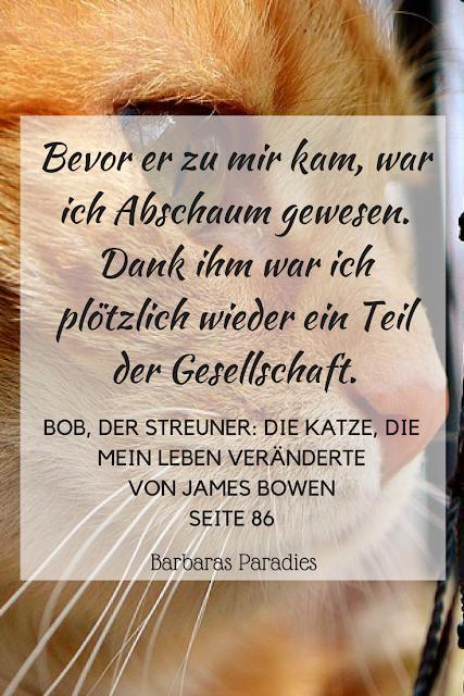 Buchrezension #169 Bob, der Streuner Die Katze, die mein Leben veränderte von James Bowen Zitat
