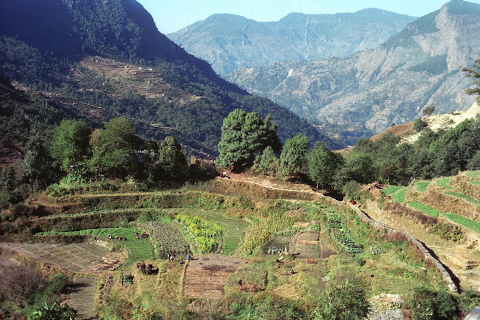 Népal, Pokhara, Annapurna, Nagdanda, © L. Gigout, 1990