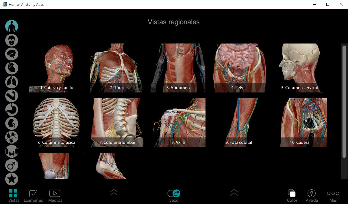 Solo Hombres Pensantes: Atlas de Anatomia Humana en 3D