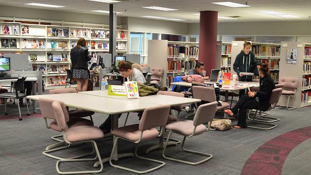 thư viện sách skylake