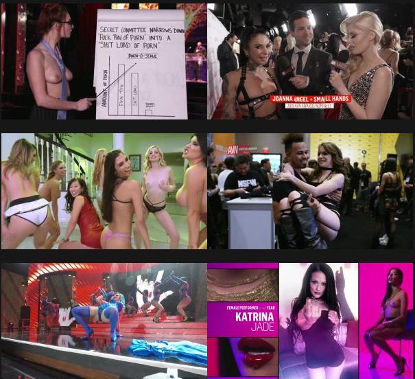 [18+] Best in Sex: 36th AVN Awards (2019) English 480p HDRip 400MB Desirehub