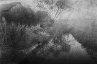 Naturpark Kyffhäuser Spiegelung Baum schwarz weiß Landschaftsfotografie