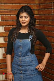 Actress Hebah Patel Stills at Nanna Nenu Naa Boyfriends Movie Interview  0010.JPG